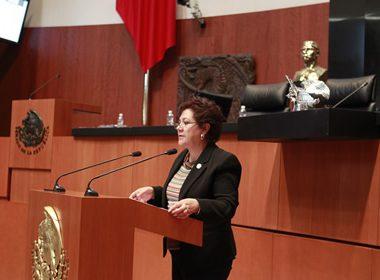 Senadora priista María del Rocío Pineda Gochi