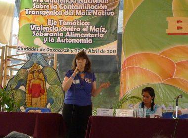 """Pre-audiencia """"Contaminación Transgénica del Maíz Nativo"""""""