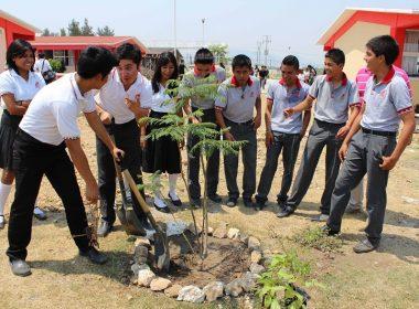Gran participación de alumnos del Cobao