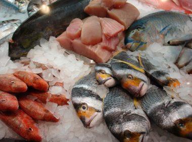Revisar pescado fresco