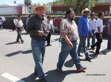 Flavio Sosa en la megamarcha convocada por la Sección 22 del SNTE.