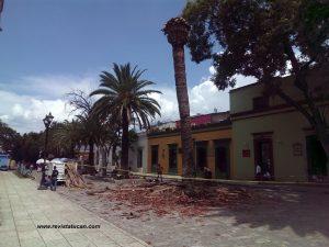 Palmeras de Santo Domingo