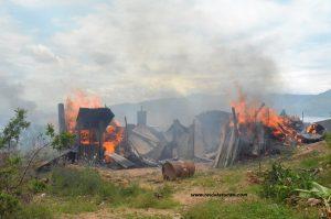 Más de 40 hectáreas fueron desalojadas