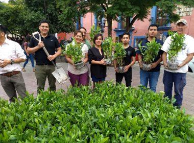 Artistas en el Jardín Labastida